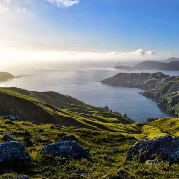 French-Pass-to-dUrville-Island-2-Feature-Mandatory-Credit-NZPocketGuide.com_YOU Travel Whitianga – Escorted Tours Travel Agent.jpg