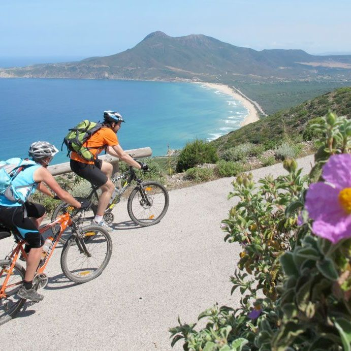 How to Live Your Dream Life and Enjoy a Cycling Holiday 1_YOU Travel Whitianga – Escorted Tours Travel Agent.jpg
