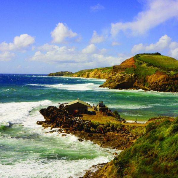 Whitianga Chatham Islands Flyer Coast-2.jpg